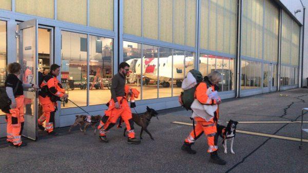 Schweizer Suchhunde auf dem Weg nach Albanien